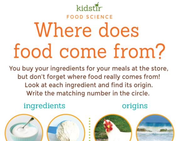 Where Does Your Food Come From? Game for Kids