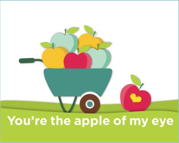 Apple of My Eye Wheelbarrow full of apples