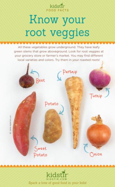What are Root Vegetables? | Kidstir